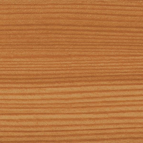 Mountaine Pine