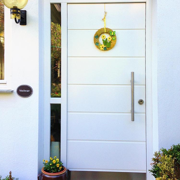 Chicago model front doors for Front door models